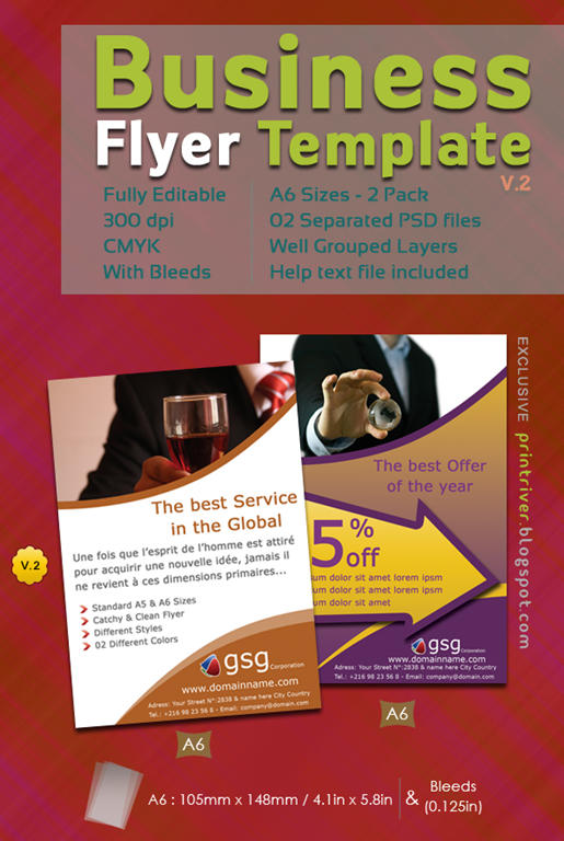 Free Business Flyer   02 Packs  Advertising Flyer Templates Free