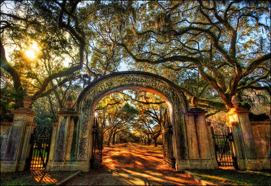 Wormsloe, the Endless Forest of Savannah by Trey Ratcliff