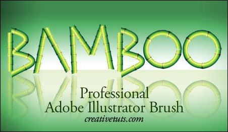 Bamboo-Pro-Illustrator-Brush-1