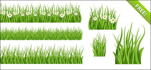 Green-Grass-PSD