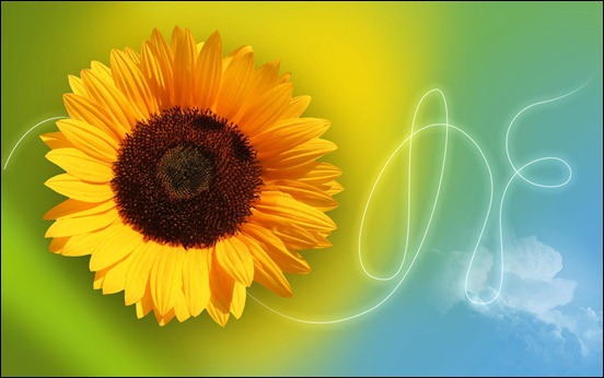 create-a-sunflower-themed-wallpaper