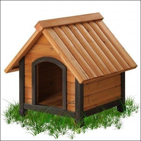 arf-frame-dog-house
