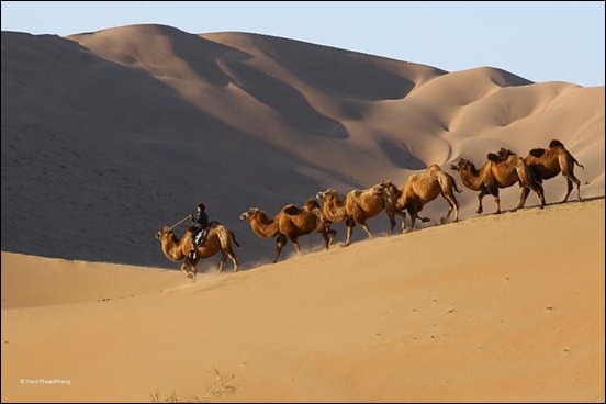 inner-mongolia-travel-log