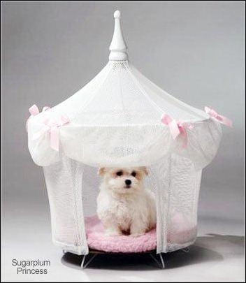 pet-tent