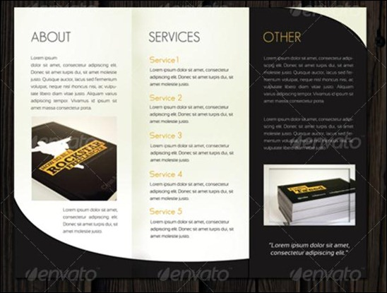 Beautiful TriFold Brochure Designs And Premium Brochure - Professional brochure design templates