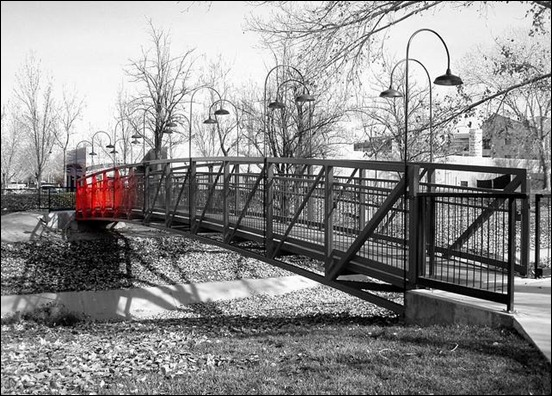 selective-color-photography[3]