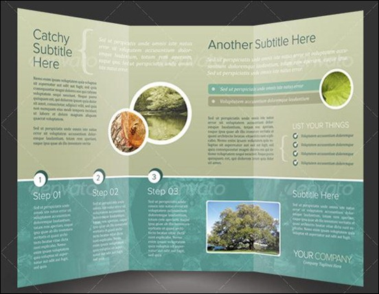 Beautiful TriFold Brochure Designs And Premium Brochure