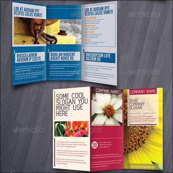 60+ Beautiful Tri-Fold Brochure Designs And Premium Brochure