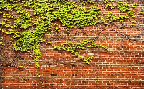 brick-wall-panorama
