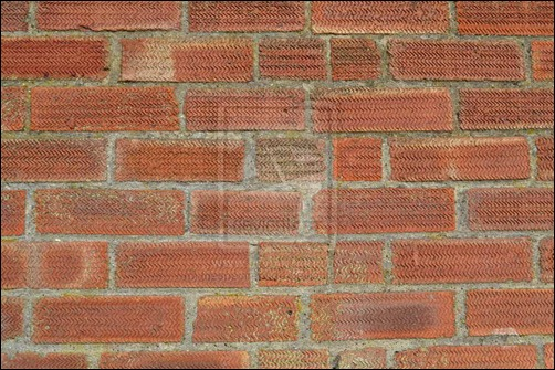 brick-wall-texture[7]