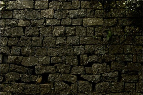 old-brck-wall-texture
