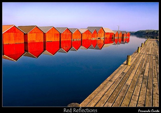 red-reflections