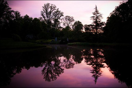 reflection-on-brookside-gardens
