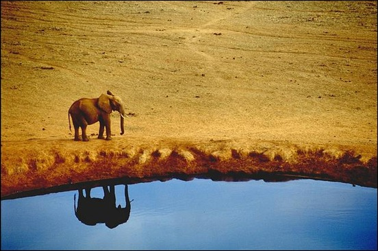 tsavo-reflection