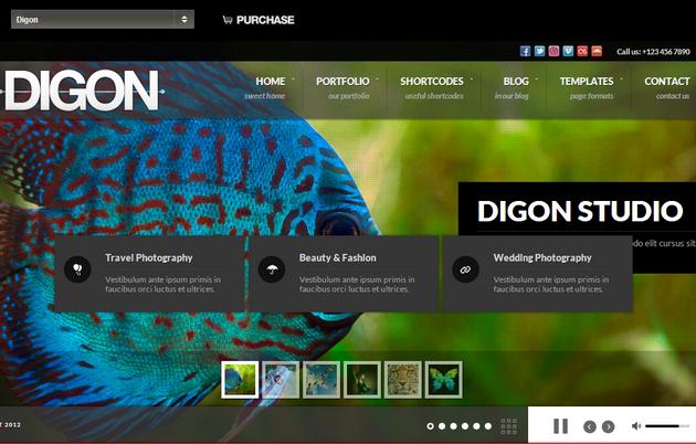 Digon, fullscreen wordpress theme