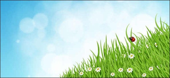 green-grass-nature-background