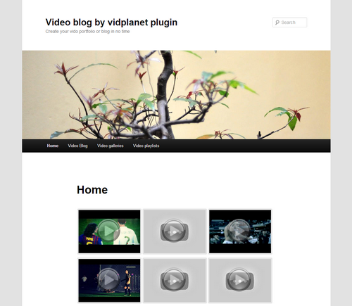 Vidplanet, video plugin