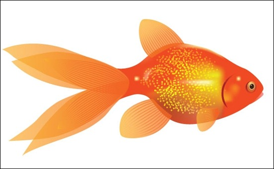 how-to-create-a-vector-goldfish
