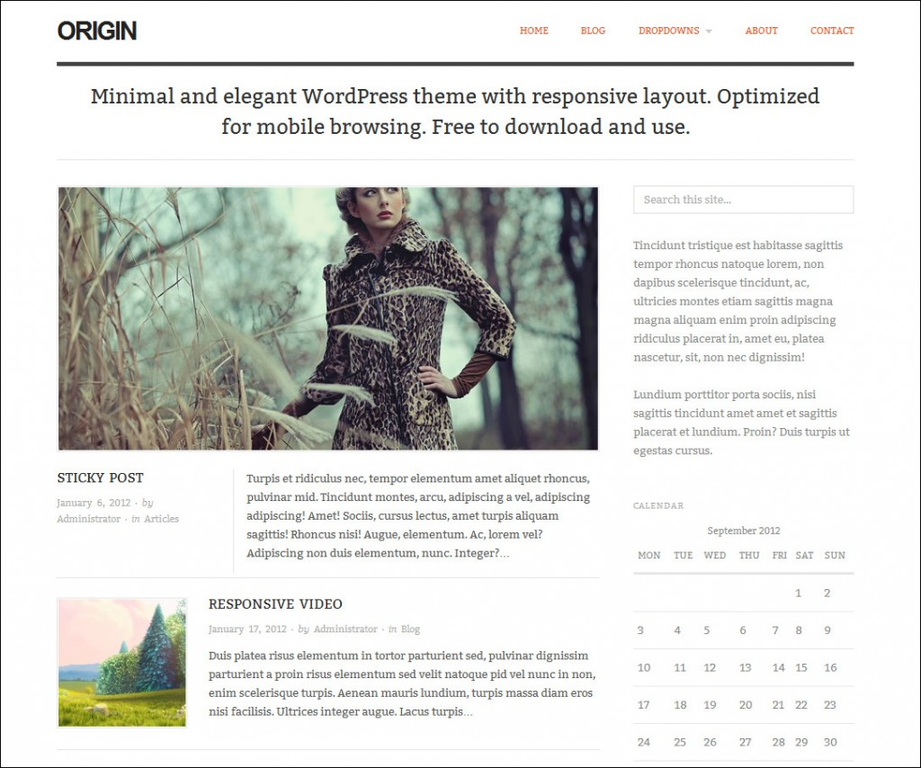 origin-free-wordpress-theme