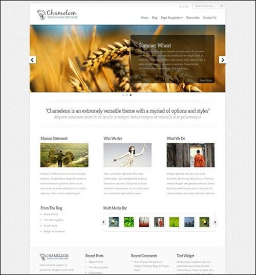 chameleon-wp-theme