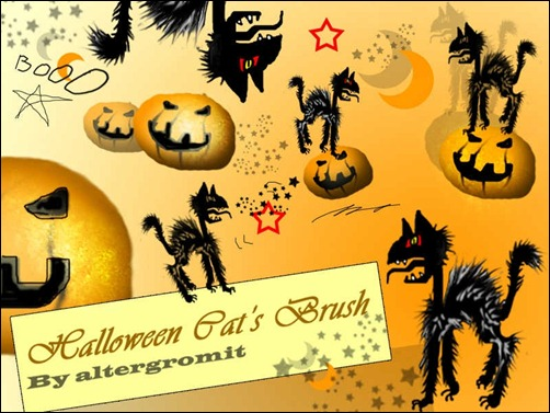 halloween-cat-brush-
