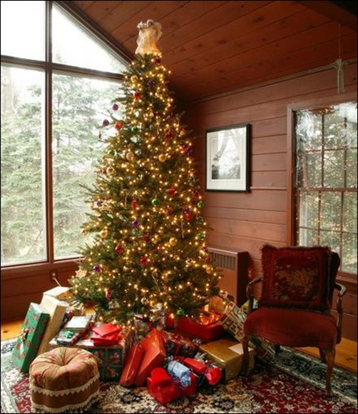 24 Beautiful Christmas Tree Pictures Creative Interiors Inside Ideas Interiors design about Everything [magnanprojects.com]