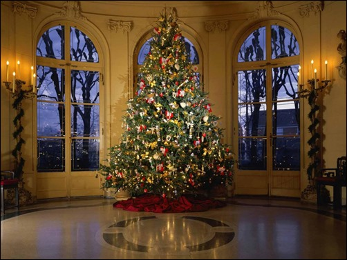 christmas-tree-pic[3]