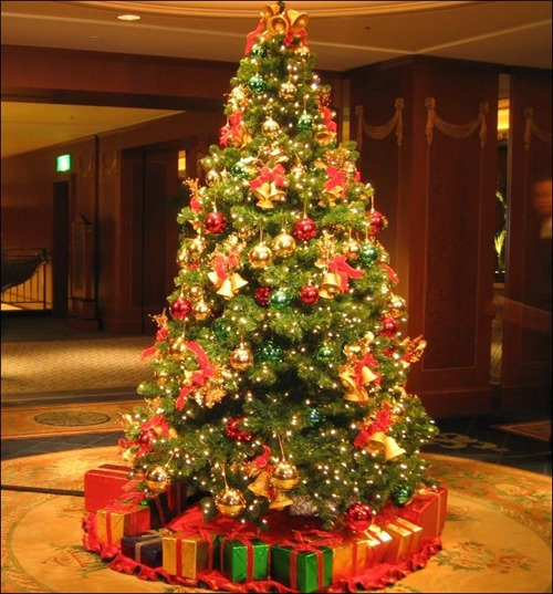 christmas-tree-pic