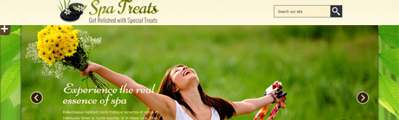 health and wellness wordpress themes