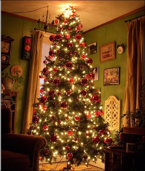 Christmas Tree In Living Room Custom 24 Beautiful Christmas Tree Pictures  Creative Cancreative Can Design Decoration