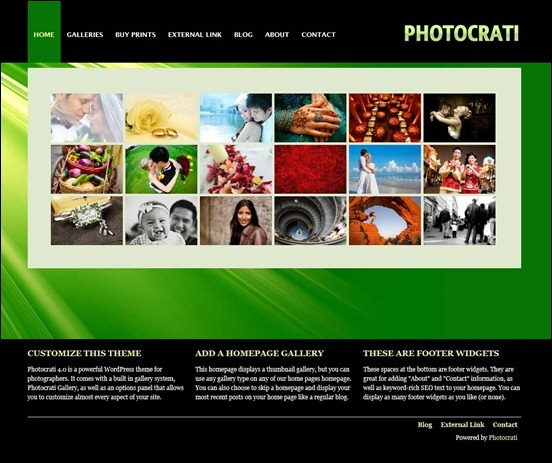 This is the Photocrati Focus theme specially made for photographers. It is a theme framework that can be used to set up many types of photograpthy oriented websites