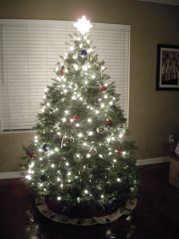 24 Beautiful Christmas Tree Pictures - Creative CanCreative Can