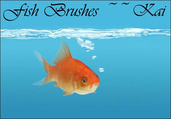 a-set-of-fish-brushes--for-photoshop-cs3