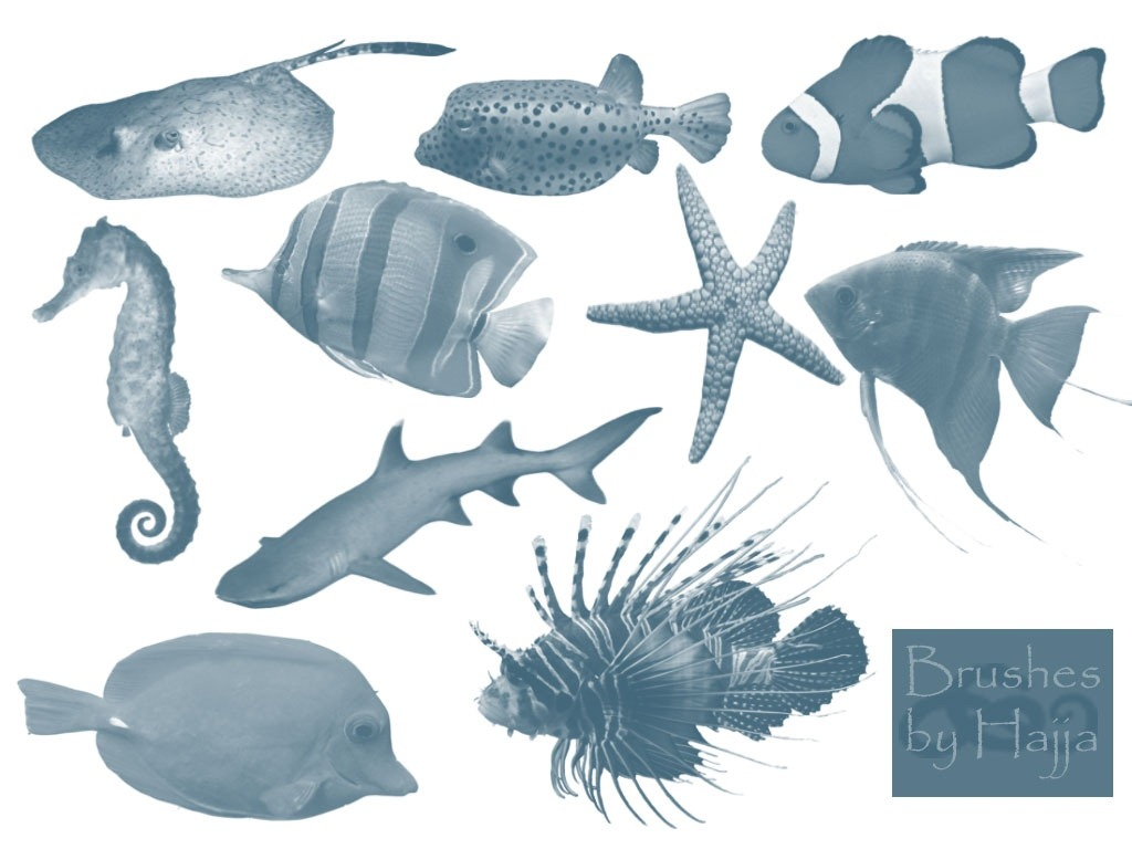 FREE 250+ Photoshop Fish Brushes in ABR | ATN