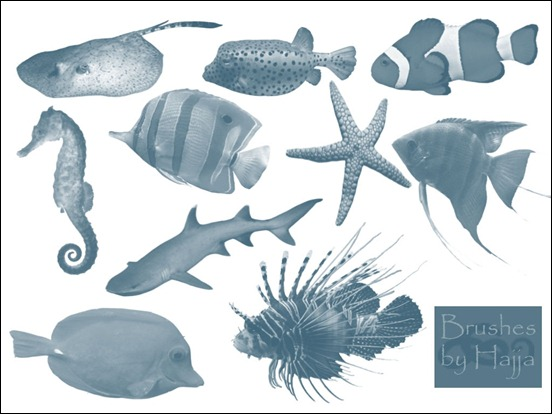 fish-brushes-photoshop-