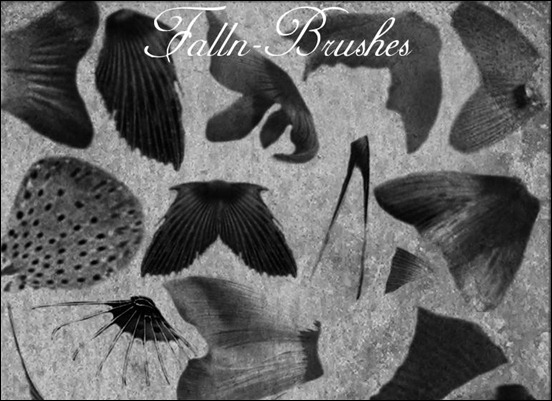 fish-fins-brushes-