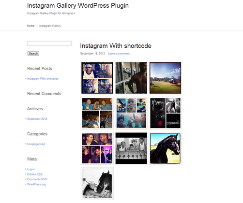 Instagram gallery, WordPress Portfolio