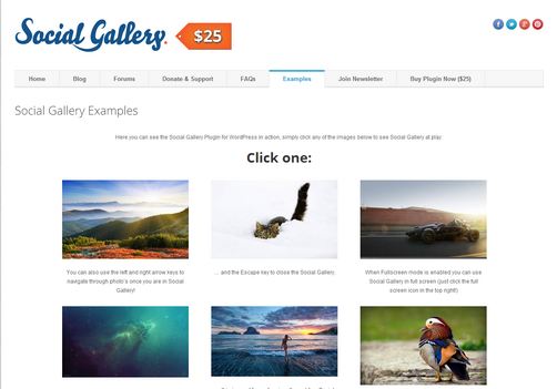 Social Gallery, WordPress Portfolio