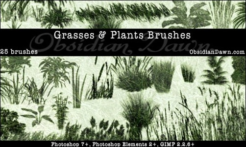 Grass-And-Plants-PS-Brushes
