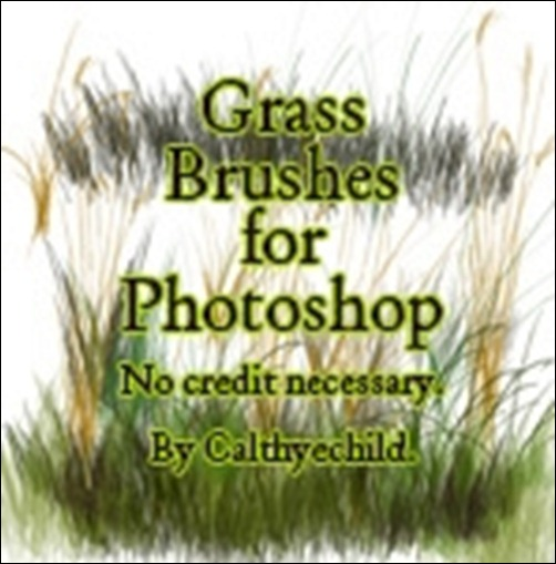 Grass-Brushes-For-Photoshop