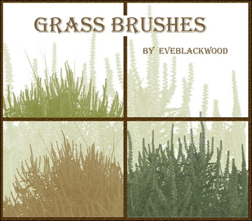 Grass-Plant-Brushes