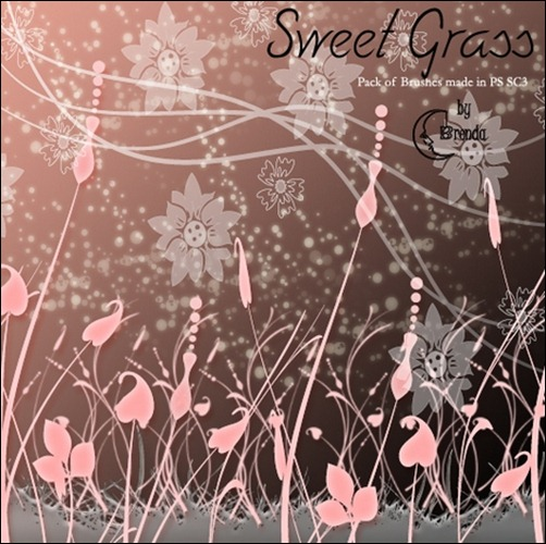 Sweet-Grass-Brushes