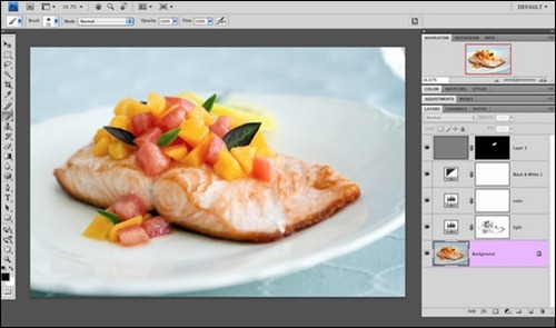 salmon-photoshop