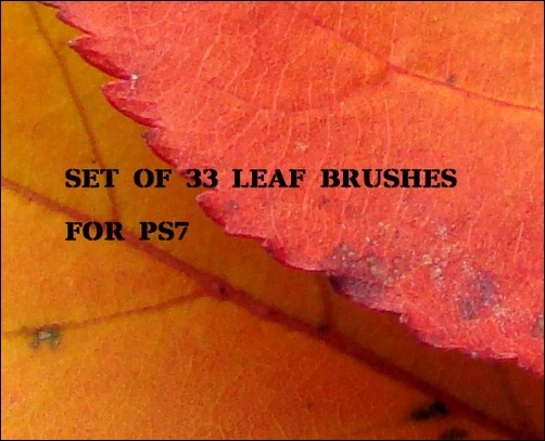 33-ps7-leaf-brushes