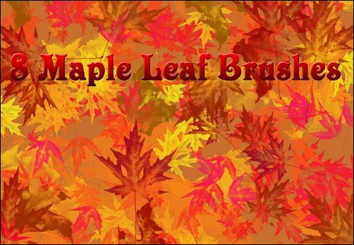 8-large-maple-leaf-brushes