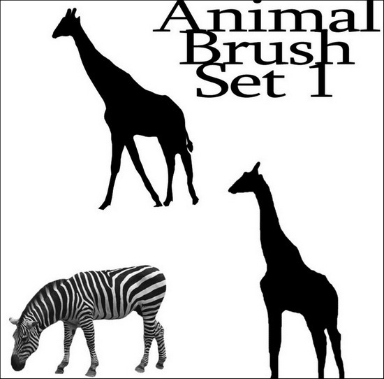 animal-brush-set[3]