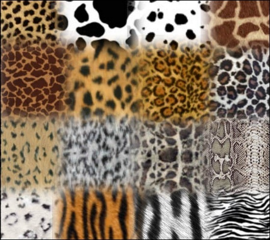animal-prints-brushes