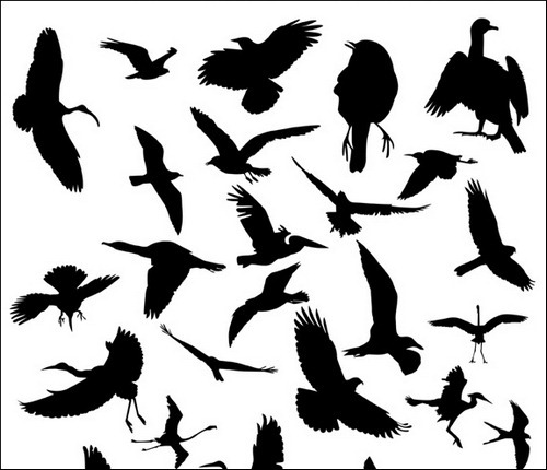 bird-silhouette-brushes