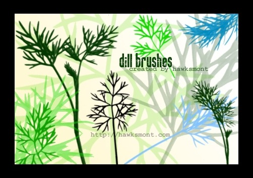 dill-brushes