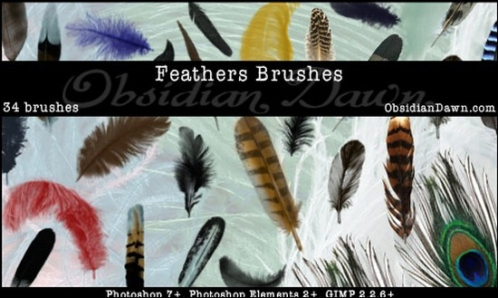 feathers-brushes